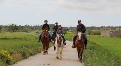 horsebackriding pferdehof ranch fincaurlaub ferien auf dem pferdehof in mallorca reiturlaub finca pferd reiten erlebnisse caballo blanco son bages