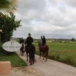 pferdeferien pferdefinca horsebackriding pferdehof ranch fincaurlaub ferien auf dem pferdehof in mallorca reiturlaub finca pferd reiten erlebnisse caballo blanco son bages