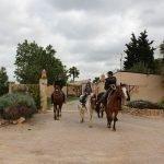 reiterferien pferdeferien pferdefinca horsebackriding pferdehof ranch fincaurlaub ferien auf dem pferdehof in mallorca reiturlaub finca pferd reiten erlebnisse caballo blanco son bages pferdehof pferderanch pool reiten horses