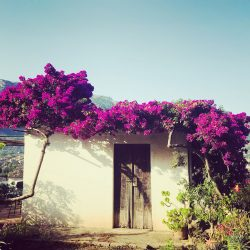 Unterkünfte Mallorca, Hotels, Finca Hotels, eco-hotels mallorca, Ferienwohnungen