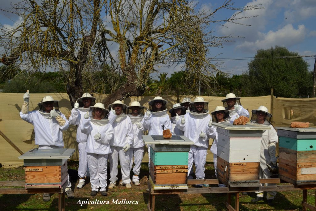 sustainable visit savethebees organic honey tasting harvest little helpers natural beekeepers tools ecocolmena apicultura adopt a beekeepers beekeeping bees biodiversity diversity eco environment helpthebees honey nature savethebees authentic buylocal crueltyfree foodforthought handcraft healthyfood healthy islandlife local mallorquin mallorca natural traditional tradition countrylife sweet beefriend sustainable respect quality welfare beehive souvenir giveback