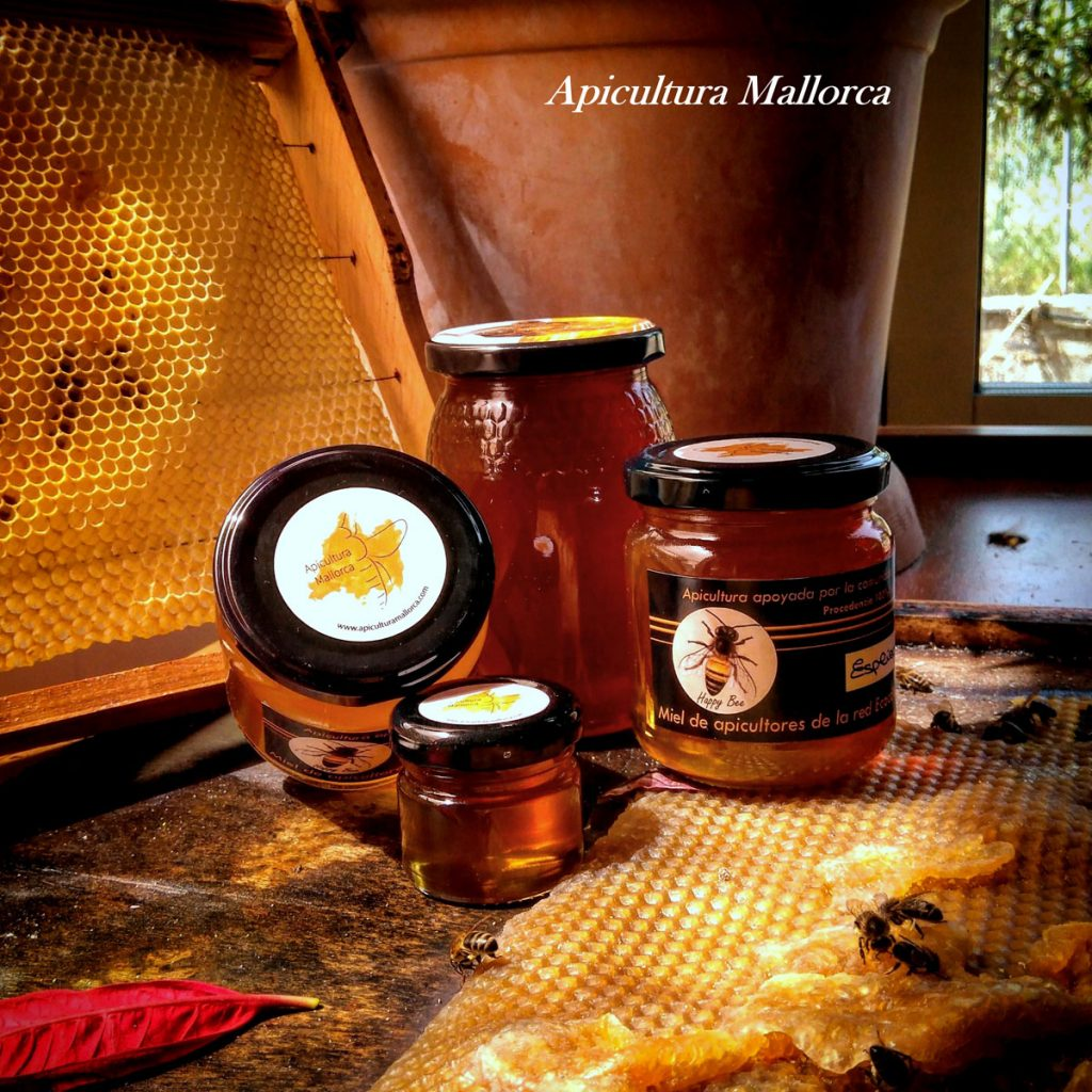 perfect souvenir make your own sustainable visit savethebees organic honey tasting harvest little helpers natural beekeepers tools ecocolmena apicultura adopt a beekeepers beekeeping bees biodiversity diversity eco environment helpthebees honey nature savethebees authentic buylocal crueltyfree foodforthought handcraft healthyfood healthy islandlife local mallorquin mallorca natural traditional tradition countrylife sweet beefriend sustainable respect quality welfare beehive souvenir giveback