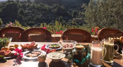 breakfast terrace garden countryholiday finca peaceful ananda yoga retreat bio vegan conscious eco finca sustainable organic conscioustraveler natural biodiversity diversity environment nature authentic buylocal crueltyfree foodforthought healthyfood healthy islandlife local mallorquin mallorca natural traditional tradition countrylife sustainable respectful quality giveback soller serradetramuntana