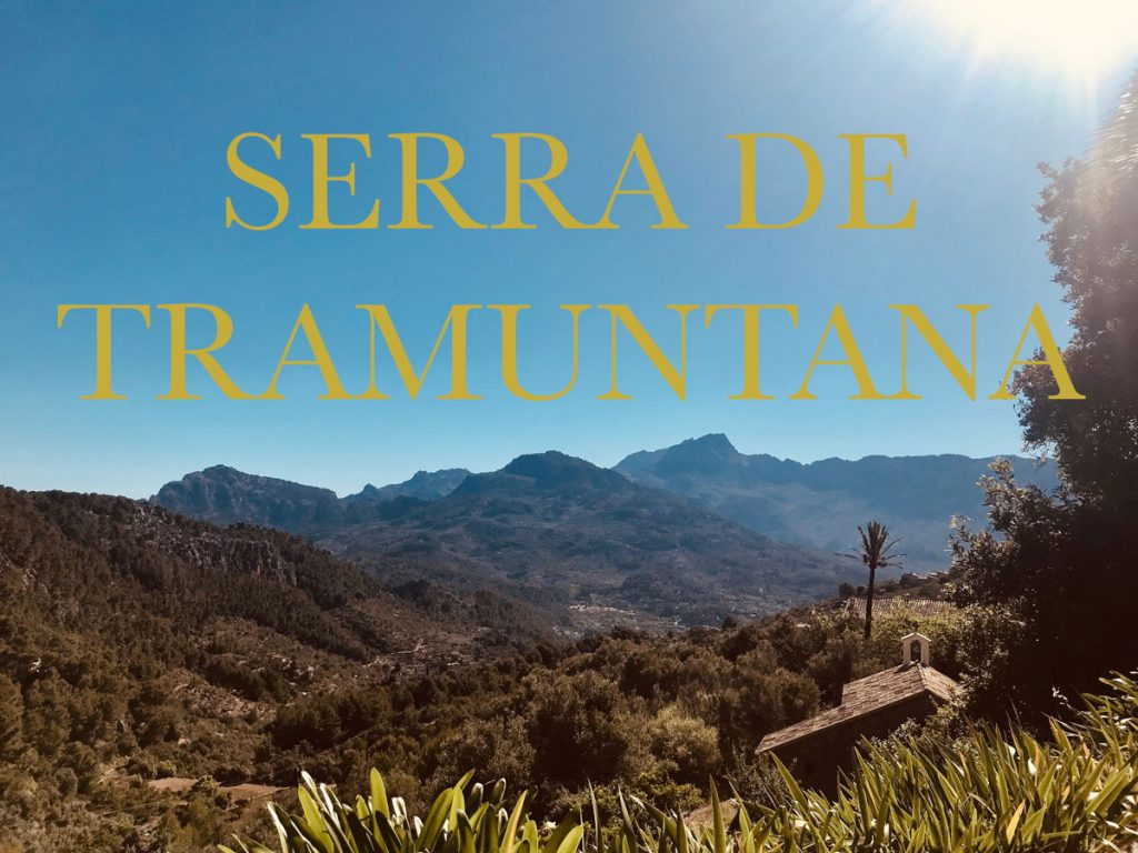 Discover the flora and fauna of the Sierra de Tramuntana