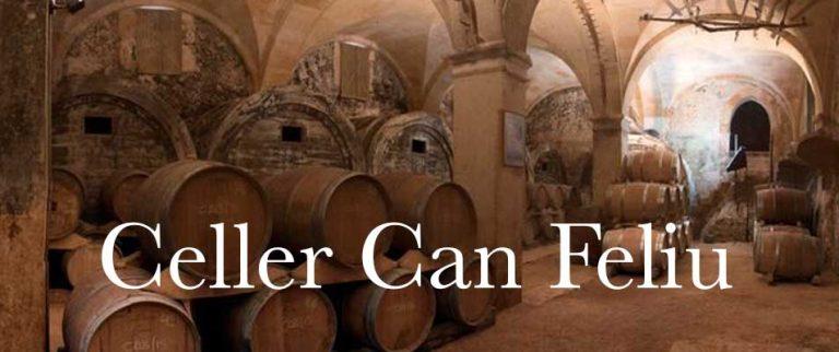 Bio Wein Mallorca – Demeter Weingut Can Feliu in Porreres
