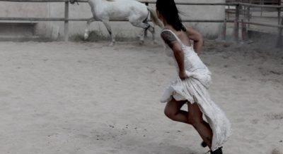 Pferdegestütztes Life Coaching Mallorca