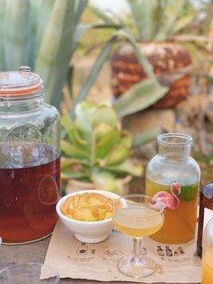 cocktail calm calma refresh recharge saludable sano healthy harvest olivenernte organic olive leaf tea mallorca infusion hojas olivo olivenblatt tee bio eco latte dosalquemistas