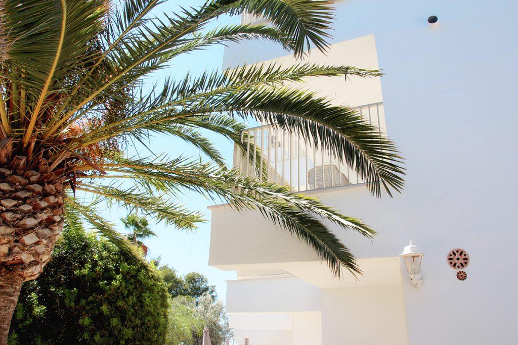 vacaciones mallorca portopetro vista casas agua clara azules Niu D´Aus terracita holiday hotel petit Apartaments Holidays Summer palmtree palmera