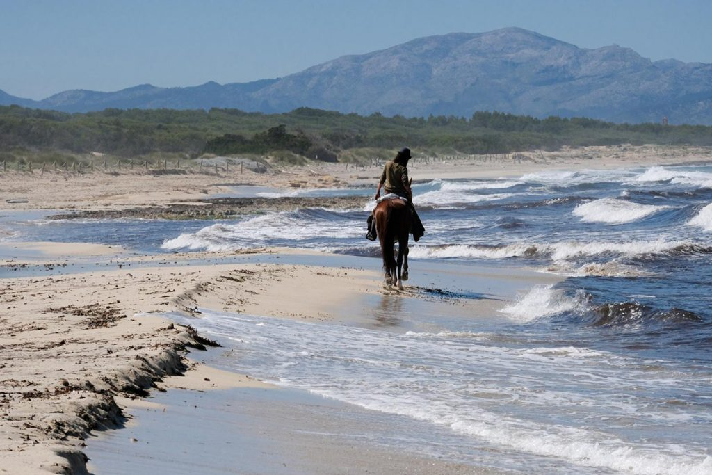 natura.cavall.horseback.riding.mallorca.nature.reiten.meer.sea.eastcoast
