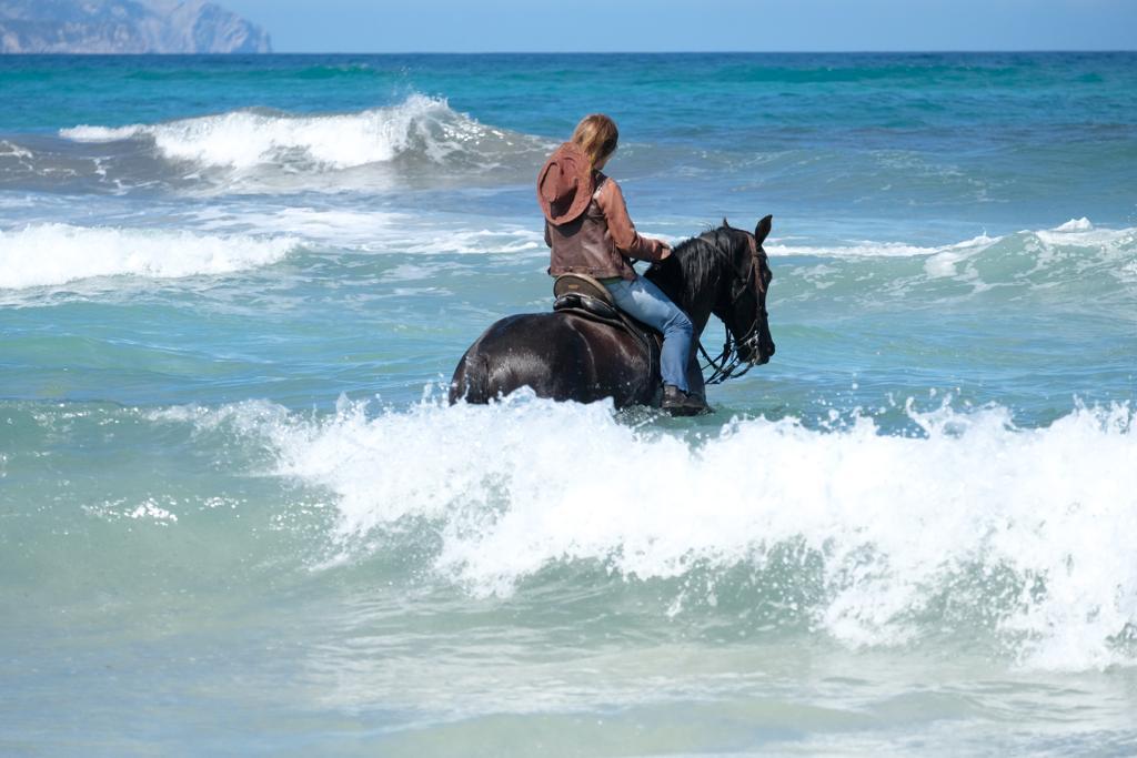 natura.cavall.horseback.riding.mallorca.nature.reiten.meer.sea.eastcoast.beach