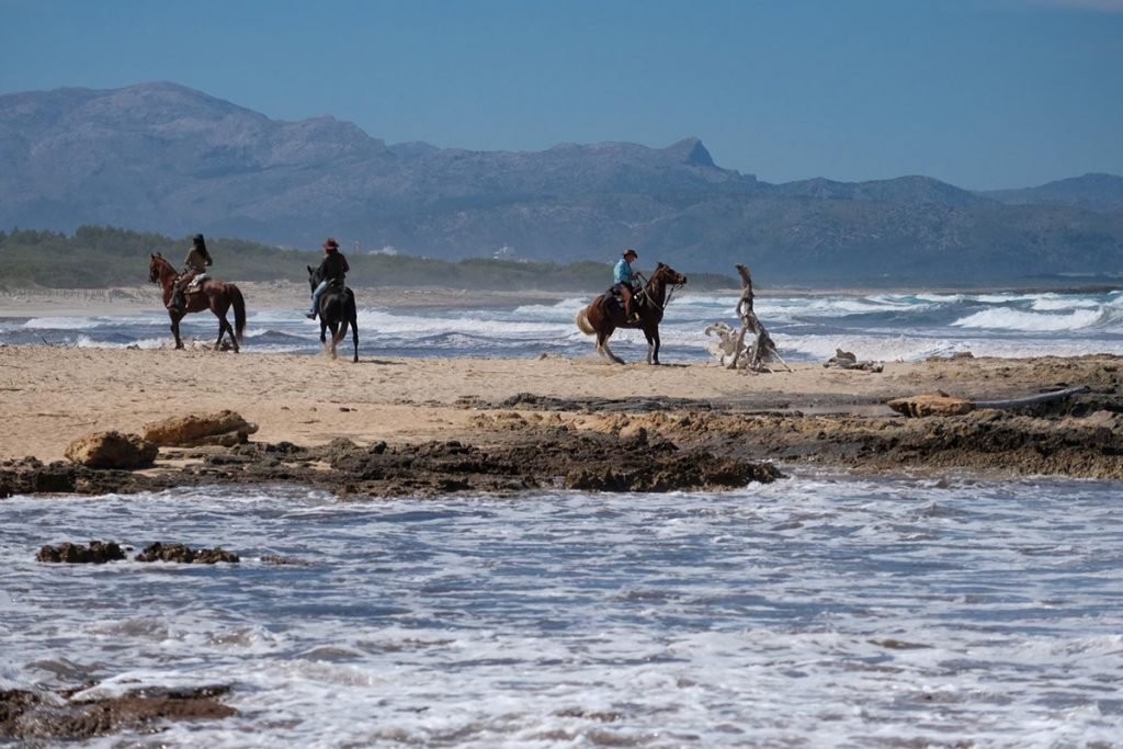 natura.cavall.horseback.riding.mallorca.nature.reiten.meer.sea.excursion