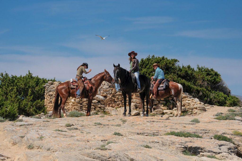 natura.cavall.horseback.riding.mallorca.nature.reiten.meer.sea.playa.caballos