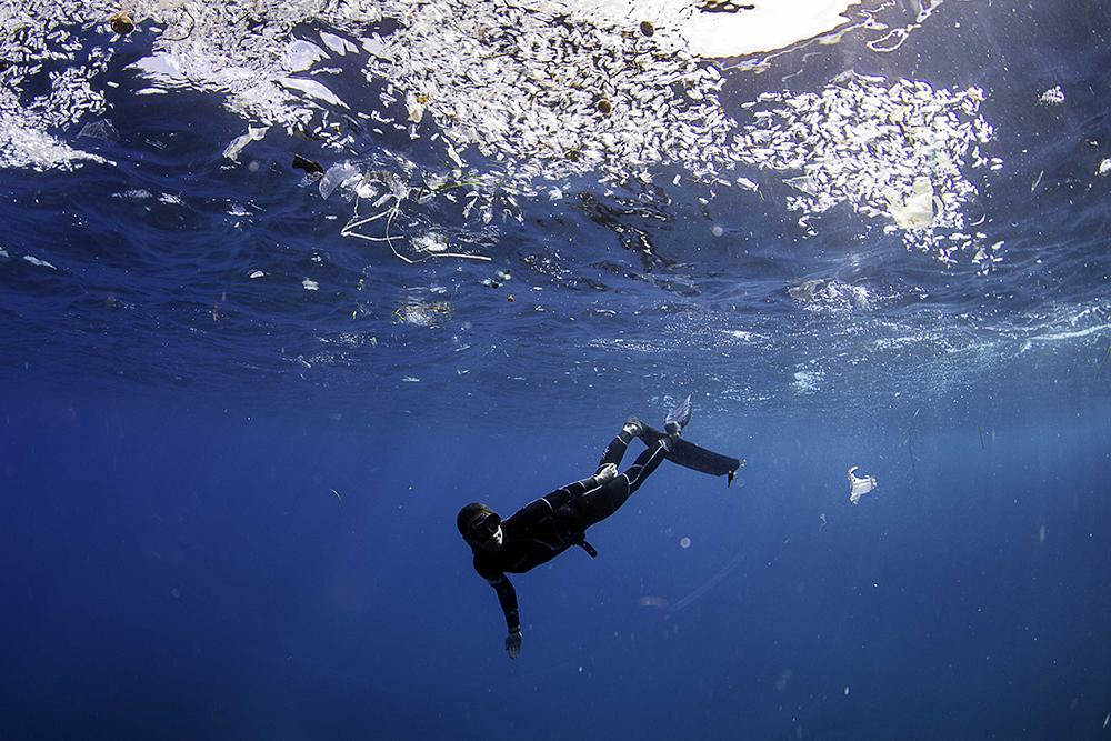 savethemed.mallorca.mar.sea.ngo.dive.diving.buceo.Photo.James.Cooke