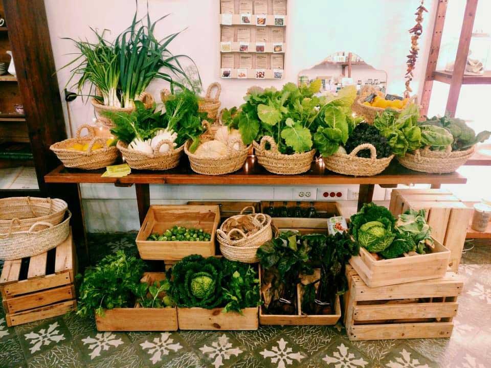 biokalma.eco.tienda.palma.mallorca.bio.organic.reformhaus.cafe.cesta.verdura