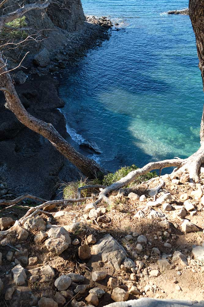 anna.alfaro.mallorca.coach.stories.nature.vida.consciente.mar.mediterraneo