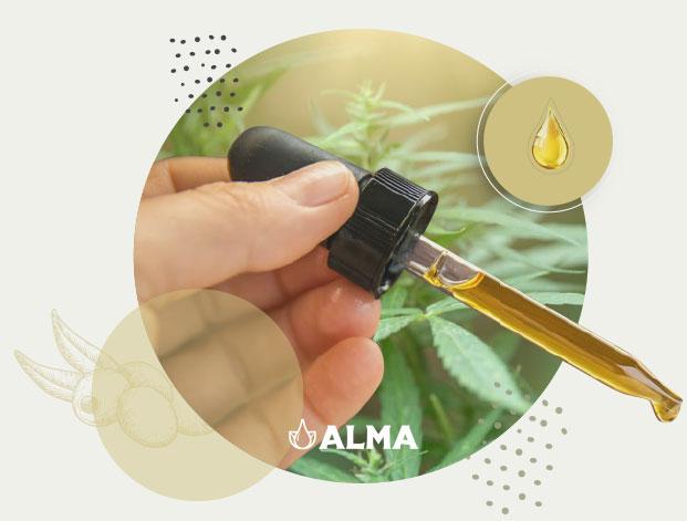 ALMA.aceite.CBD.beneficios.oliva.Mallorca.nature.medecine.remedy.natural.remedio