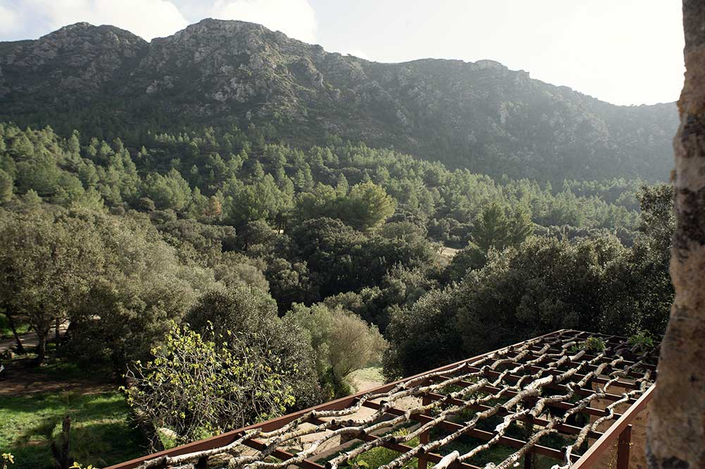 es.raco.de.arta.yoga.retreat.mallorca.healthy.sustainable.holiday.tramuntana.mountains.montes