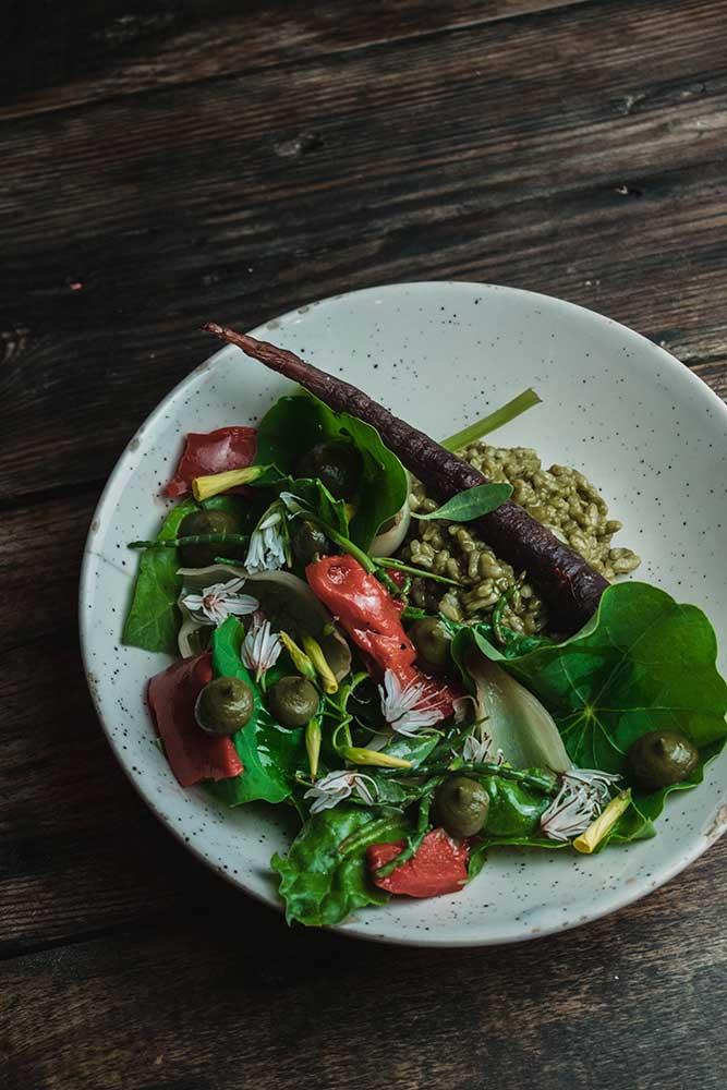 start.terrae.restaurante.sostenible.mallorca.puerto.pollenca.sustainable.restaurant.earth.nature.dish