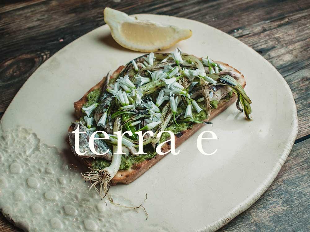 start.terrae.restaurante.sostenible.mallorca.puerto.pollenca.sustainable.restaurant.earth.nature