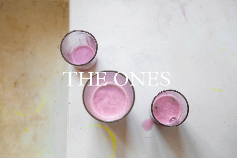The Ones, a recipe collection by Rocio Graves